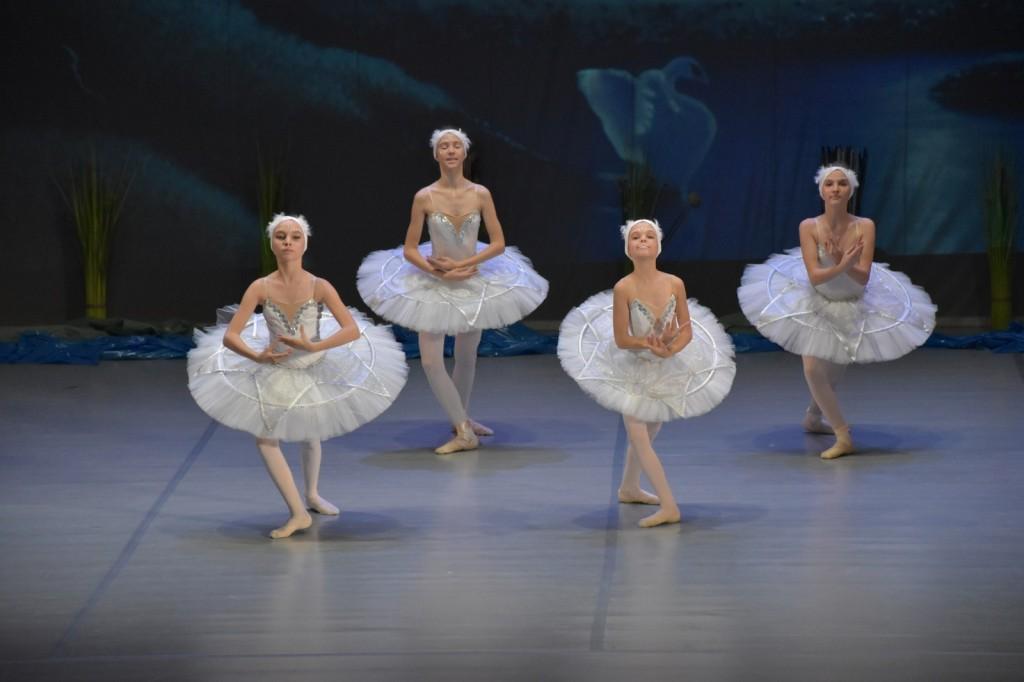 Baletna predstava LABODJE JEZERO